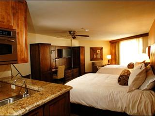 Stunning Studio Unit - Easy Access to the Town Shuttle (1101), Crested Butte