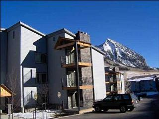 Views of Mt. Crested Butte - Close to the Historic Town of Crested Butte (1011)