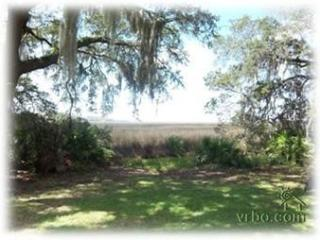 Beautiful Marsh Views Under Centuries Old Oaks, Saint Simons Island