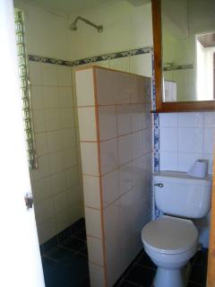 bathroom: toilet and shower