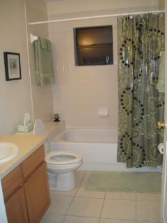 2nd Bathroom with shower and tub