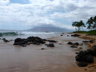 Keawakapu Beach: just a 4 minute walk from Honu Place, and you can walk for miles and miles!
