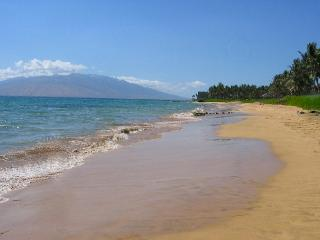 Keawakapu Beach, across the street: perfect for swimming and snorkeling