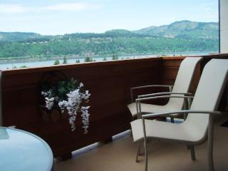 expansive deck views