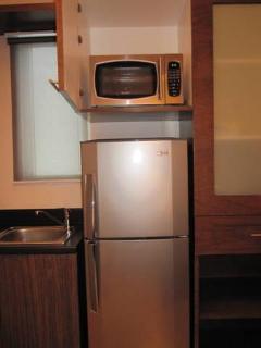 2 Door Refridgerator plus Microwave