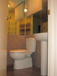 Toilet with Heated Shower