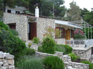 Beautiful house by the sea in Primosten - Roza