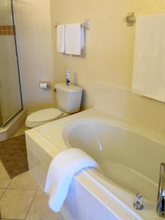 Master King Ensuite with a large oval bath