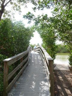 Foot Bridge Over Bayou