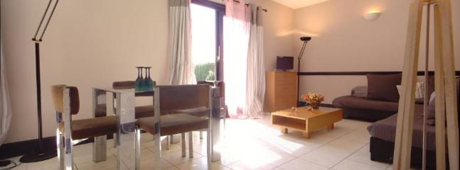 Large séjour salle à manger, ensoleillé et confortable