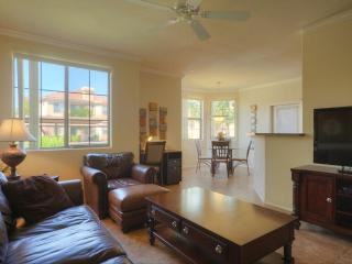 Living Room with 46' Flatscreen TV