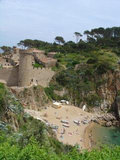 'Es Codolar'  little beach