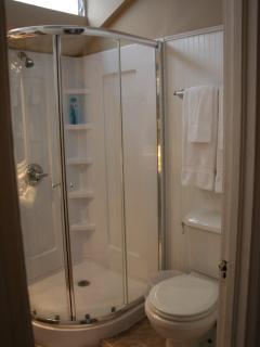 Walk-in shower, easy access.