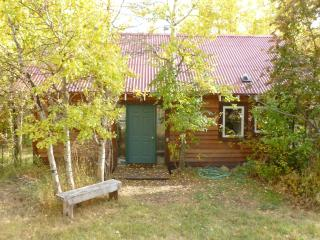 Aspen Creek Cabin, Pony