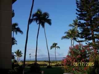 Another View from Lanai