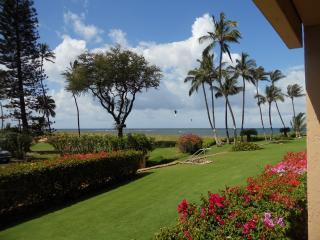 Beautiful Ocean Front 2 Bed/ 2 Bath condo - Kihei,