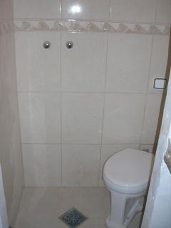 Shower & toilet in one efficient space- with shower curtain