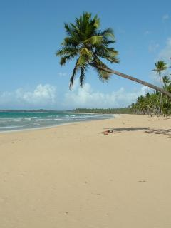 Beach - pic 1