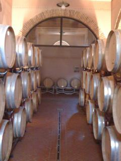 Cellar of Tenuta Poggio Rosso Winery