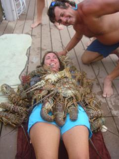 Lobster Season