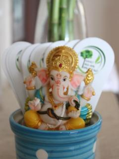 Get a Ganesha welcome!