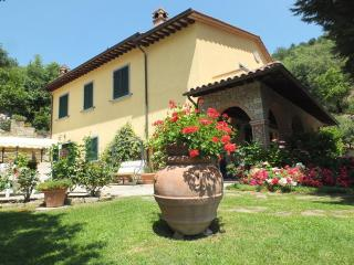 Vacatoin Rentals at Le Celle Del Farinaio in Corto