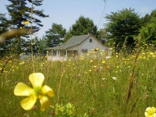 Wildflower Cottage, Perry