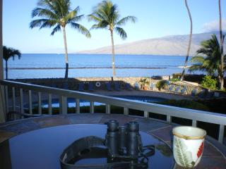 Paradise Found Maui - w/ all the comforts of home, Kihei