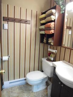 Vanity, commode and soaker tub with shower