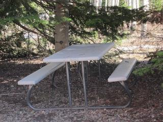 Enjoy lunch out on the picnic table
