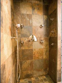 bathroom 3 - lower level - spa shower