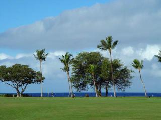 Maui Eldorado: Maui Condo J123, Ka'anapali