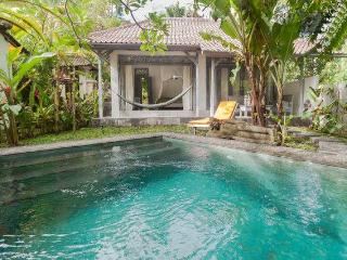 Romantic Cottage With Private Saltwater Pool, Ubud