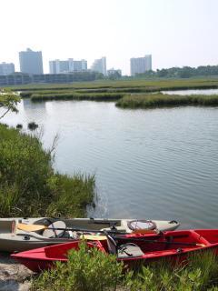 Kayaking off Old Landing Rd.