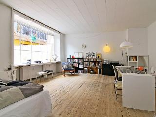 Charming studio Copenhagen apartment in City
