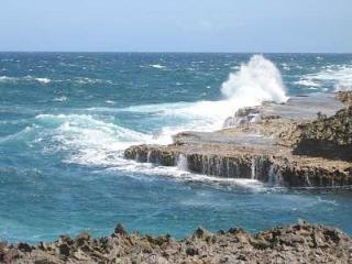 Dive into paradise oceanfront -Marazul-7B-Curacao