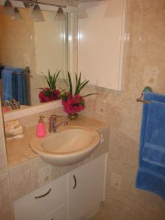 Tiled Bathroom Vanity, Imported Large Plush Towels, Delicious filtered spring water, (Hot)