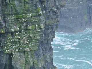 Cliffs of Moher. 5 min. Drive away
