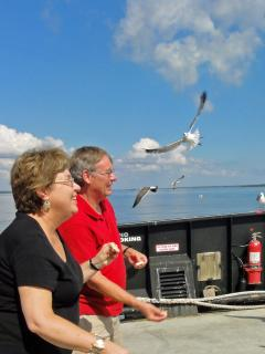 Feeding the gulls on the ferry to Southport