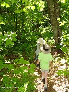 Kids run along the Fern Trail which leads to the lake.