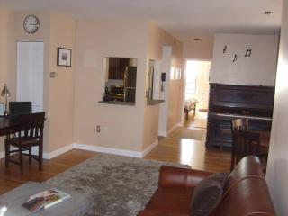 Modern Luxury Condo in Classic Brownstone Back Bay, Boston