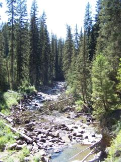 View of Local River - Summer Hiking