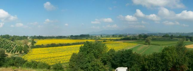 View of the valley from the balcony in the summer. The house overlooks a sunflower farm.