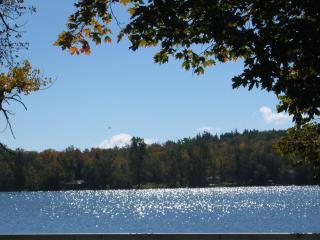 Mariaville Lake glistens in the sun