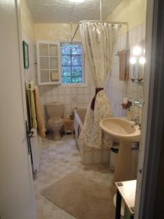 Master bathroom, tub/toilet/bidet