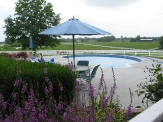 Guests are welcome to use our pool. Please ask for availability.