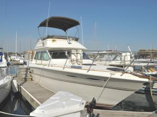 Pier Gold - B & B Boatel - For Chicago get-a-ways