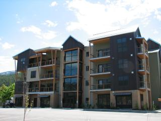Large Luxury Modern Romantic Condo W/ Full Kitchen at Silver Mtn on Bike Trail
