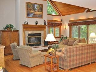 Very Spacious Living Room & Family Area with Cathedral ceilings