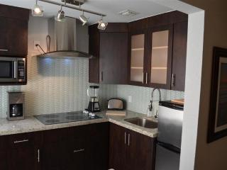 Modern Kitchen Features